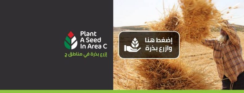Plant a Seed in Area C